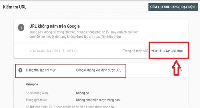 URL chưa được Google Index